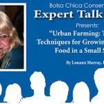 "Expert Talk Series ""Urban Farming: Tips and Techniques for Growing Your Own Food in a Small Space"" with Louann Murrary, PhD 